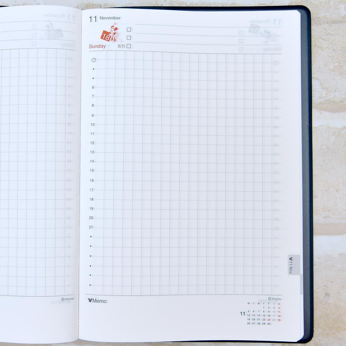 ダイゴー ディズニーデザイン 1日1ページ手帳デイリーページ詳細