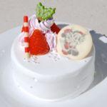 """東京ディズニーランド""""ディズニー・クリスマス2019""""クリスマスケーキ"""