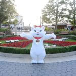 東京ディズニーシー2020クリスマス『おしゃれキャット』グリーティング