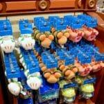 東京ディズニーランド「パークフード」マグネット・お土産