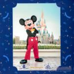 東京ディズニーランド スペシャルフォト ミッキーマウス
