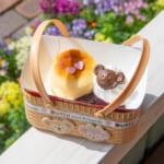 ケープコッド・クックオフ チーズケーキとベリーソース(ダッフィー)
