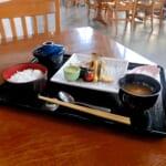 レストラン櫻 本日の魚料理